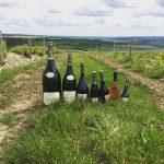 Photo de Famille Champagne millésimé Louise Brison